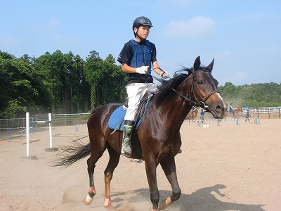 f:id:interactionhorseschool:20120728150515j:image