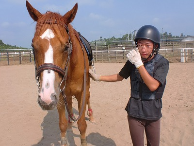 f:id:interactionhorseschool:20120728150516j:image
