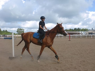 f:id:interactionhorseschool:20120805200156j:image