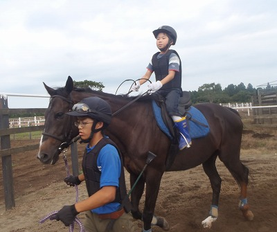 f:id:interactionhorseschool:20120808163313j:image