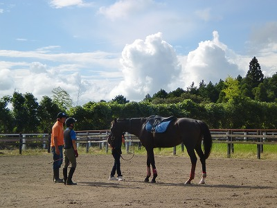 f:id:interactionhorseschool:20120915162447j:image
