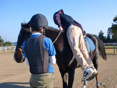 f:id:interactionhorseschool:20121026171222j:image