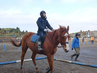 f:id:interactionhorseschool:20121229170704j:image