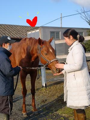 f:id:interactionhorseschool:20121231105638j:image