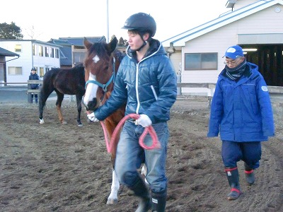 f:id:interactionhorseschool:20130104174125j:image