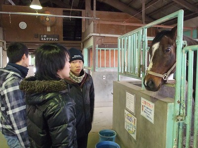 f:id:interactionhorseschool:20130123113307j:image