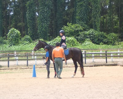f:id:interactionhorseschool:20130720161239j:image