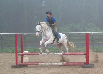f:id:interactionhorseschool:20130723172237j:image