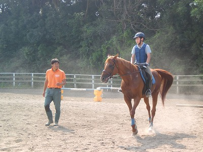 f:id:interactionhorseschool:20130727170447j:image