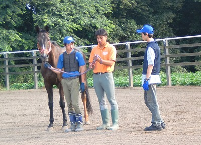 f:id:interactionhorseschool:20130730165426j:image