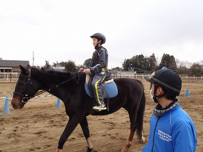 f:id:interactionhorseschool:20140117174534j:image