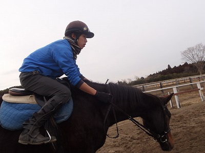 f:id:interactionhorseschool:20140207095542j:image