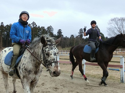 f:id:interactionhorseschool:20140227134013j:image