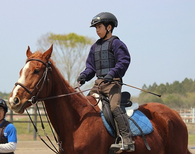 f:id:interactionhorseschool:20140413164007j:image