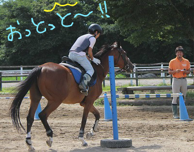 f:id:interactionhorseschool:20140804194112j:image