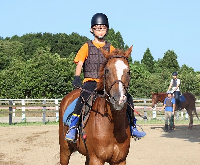 f:id:interactionhorseschool:20140807150247j:image