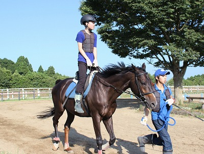 f:id:interactionhorseschool:20140807150249j:image