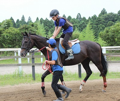 f:id:interactionhorseschool:20140809122457j:image