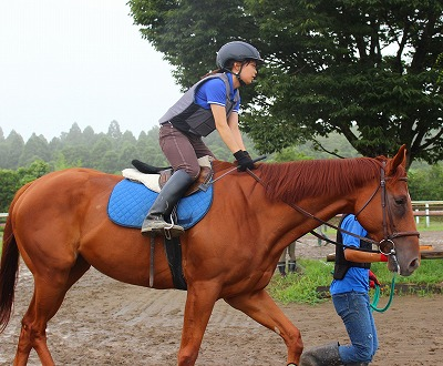 f:id:interactionhorseschool:20140813111743j:image