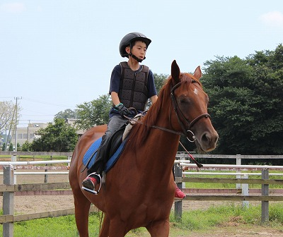 f:id:interactionhorseschool:20140822165351j:image