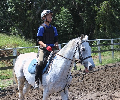 f:id:interactionhorseschool:20140912182543j:image