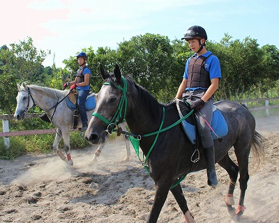 f:id:interactionhorseschool:20140916183755j:image