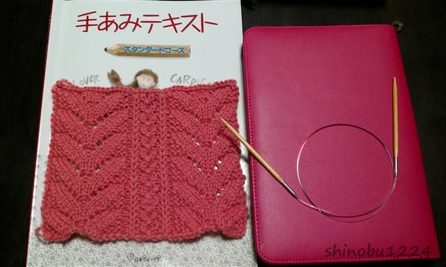 f:id:knitworms:20121124235808j:image:left
