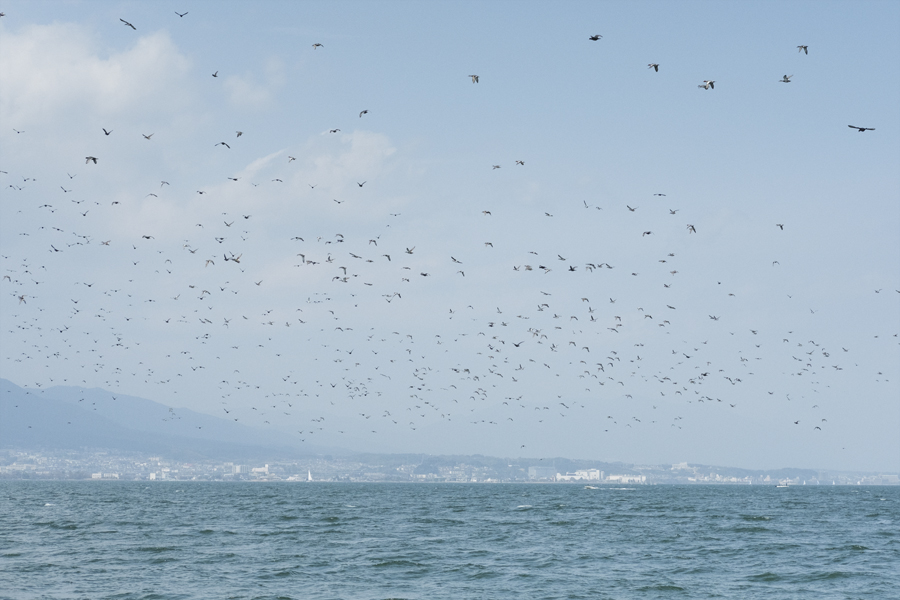 f:id:kt-photo:20160327204548j:plain