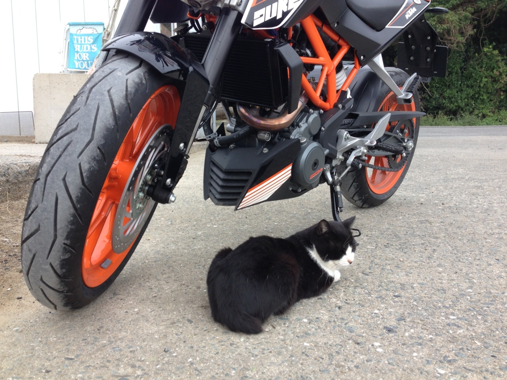 f:id:ktm390duke:20151016211559j:plain