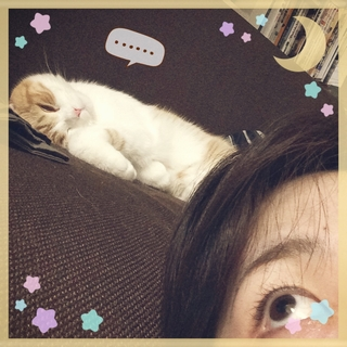 f:id:lazing-around:20140507214830j:plain