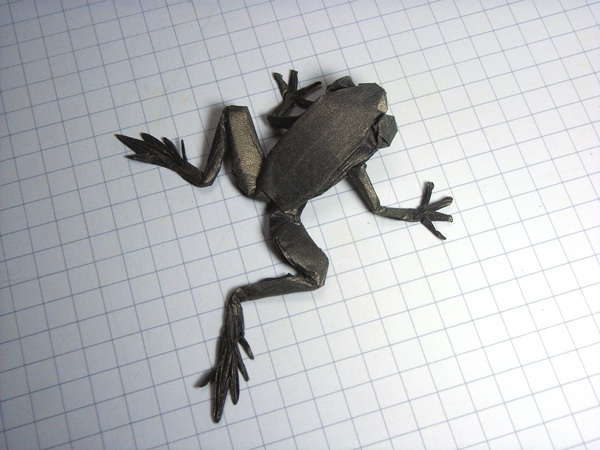Poison Dart Frog (R.J.Lang) / diagrams on OTM#131
