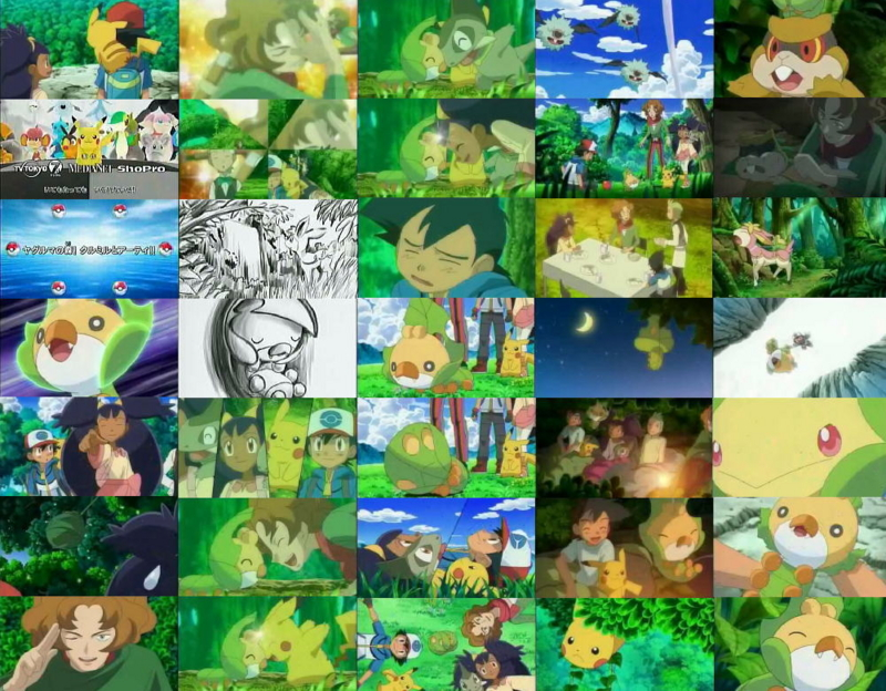 pokemonanime20110127