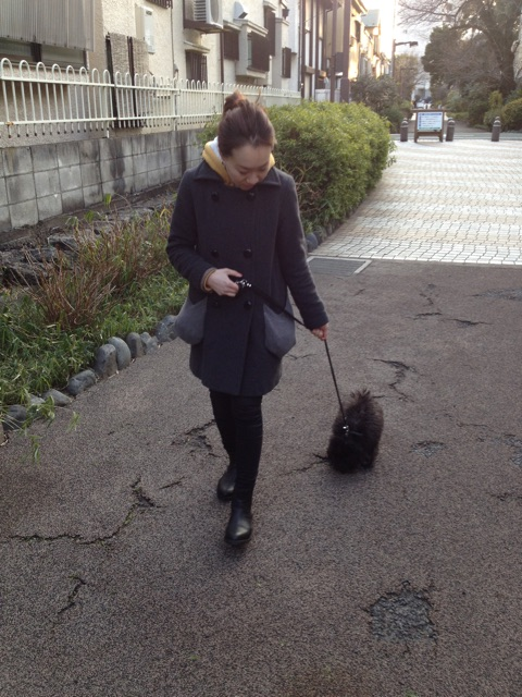 f:id:r-tani-hair:20141208101313j:plain