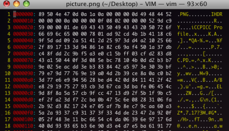 how to open a binary file in vim