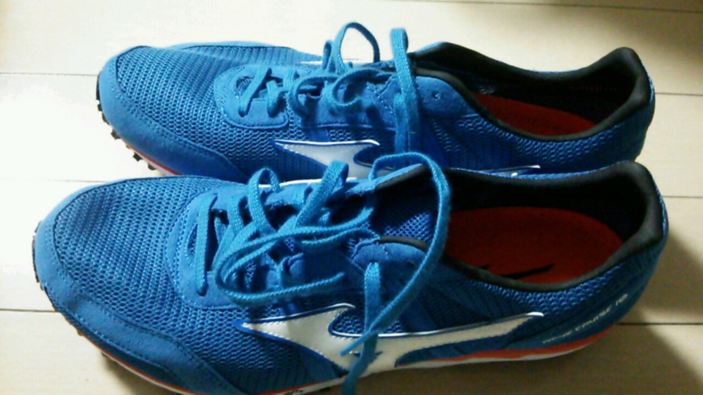 f:id:runner1500m:20151101130324j:plain