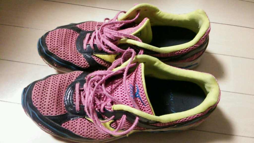 f:id:runner1500m:20151101130636j:plain