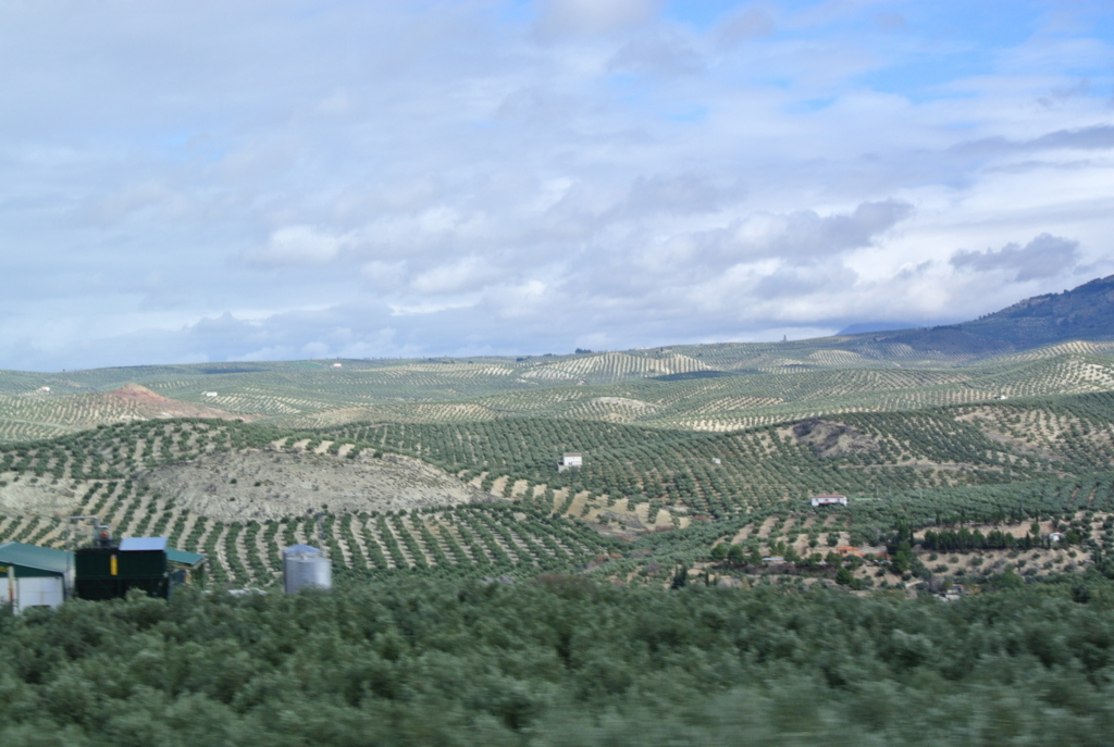 f:id:travelingbag:20160531113612j:plain