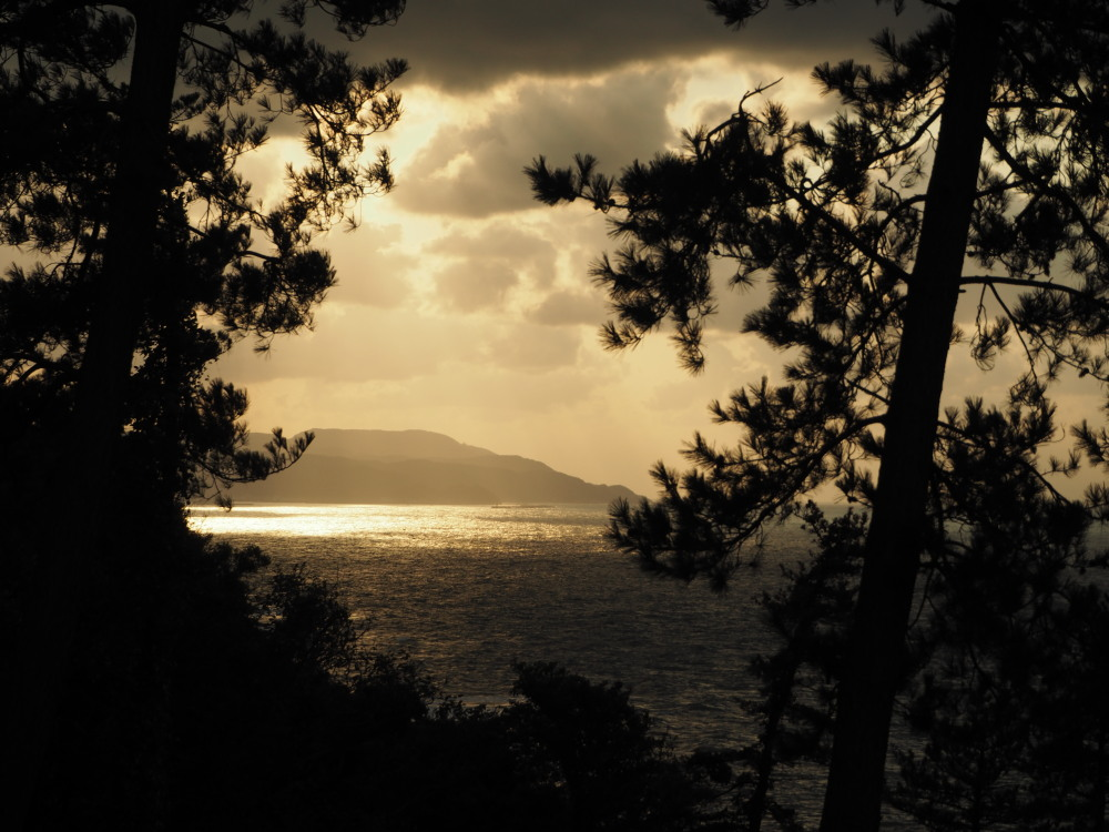 f:id:winged1:20151021075511j:plain