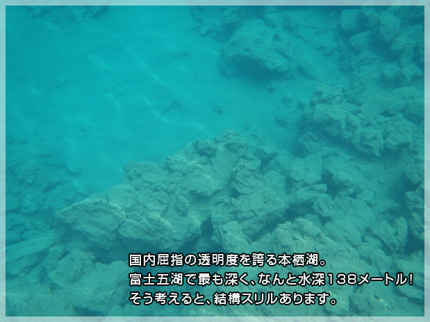 f:id:A---chan:20190623205236j:plain