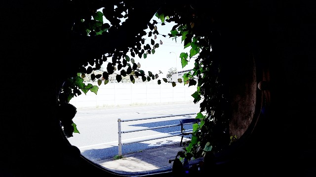 f:id:A-hanoi:20201022185929j:image