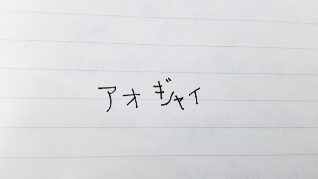 f:id:A-hanoi:20210224204617j:image