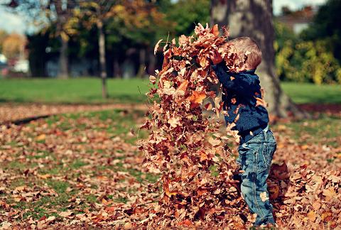 落ち葉で遊ぶ子ども