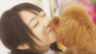 f:id:AKB48music2008:20081218234539j:image