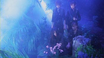 f:id:AKB48music2009:20091230020804j:image
