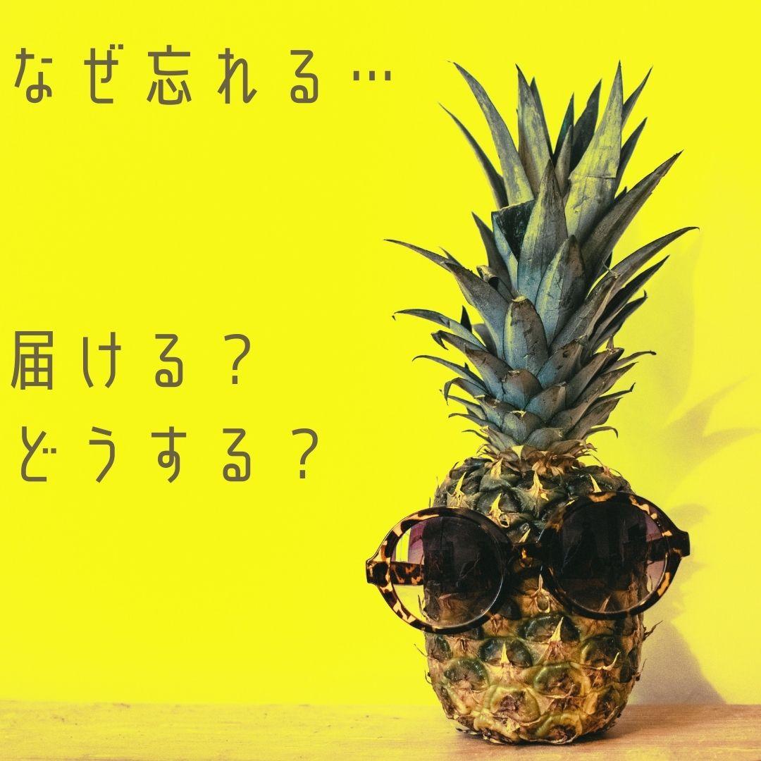 f:id:APwakuwakukosodate:20201203004044j:plain
