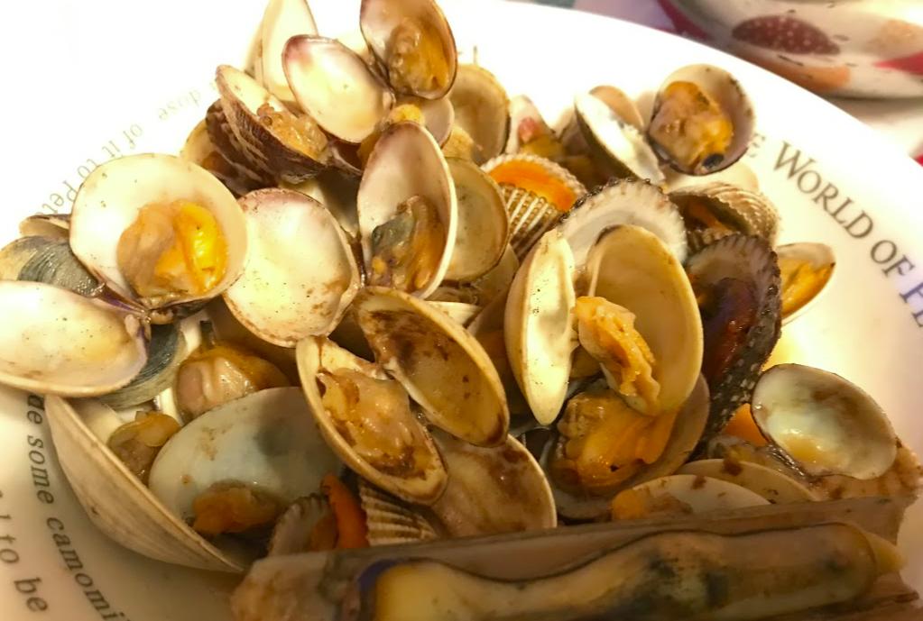 浦安三番瀬で採った貝