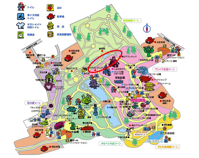 アンデルセン公園でクワガタ・カブトムシ採集の方法