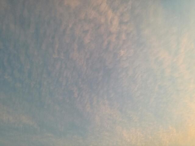 f:id:ASAMUSUBI:20171013171521j:image