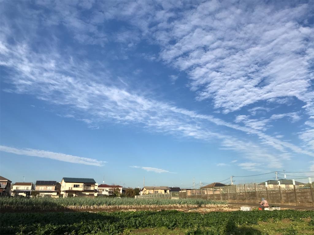f:id:ASHIASHI:20201210204841j:image