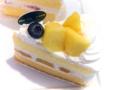 マンゴーのショートケーキ02@FOURSEASONS CAFE